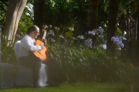 Mark Honeyman Wedding Guitarist